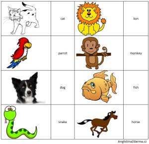 Angličtina pro nejmenší - animals